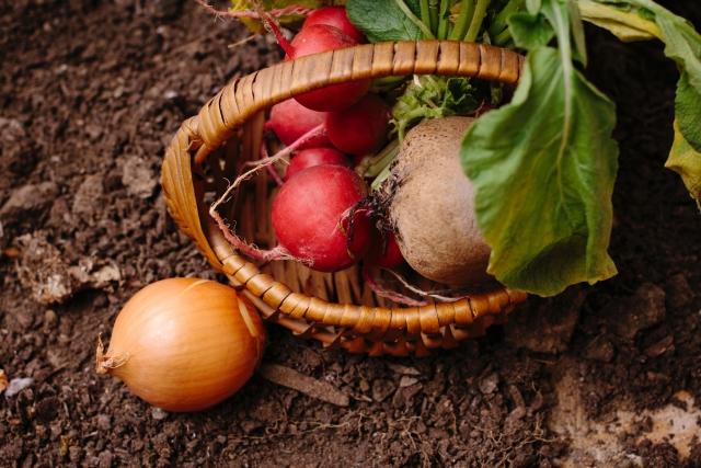 新規就農で押さえておきたい農機具の仕入れ方法