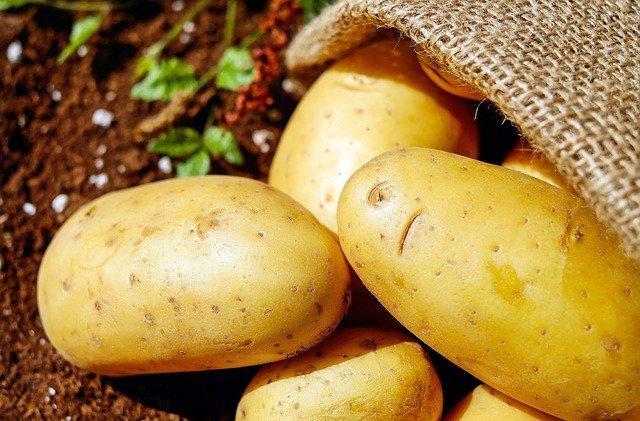 新規就農の時にも必要な農業資材の仕入れ方法