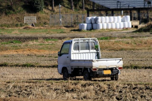 農家に必要な免許とは?農業を学ぶポイント
